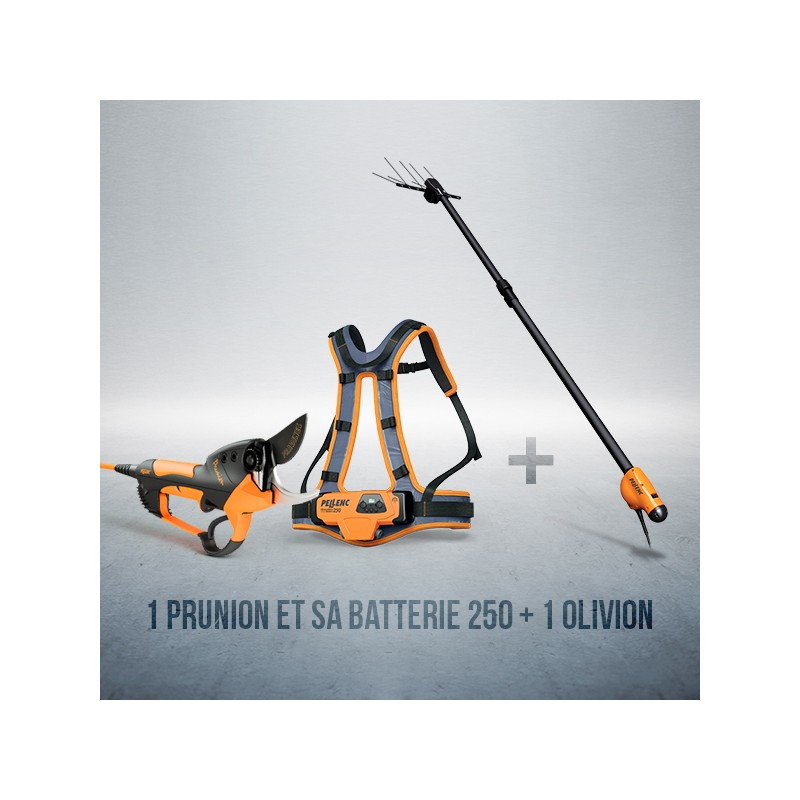 OFFRE PACK PRUNION 250 + OLIVION T 200/300